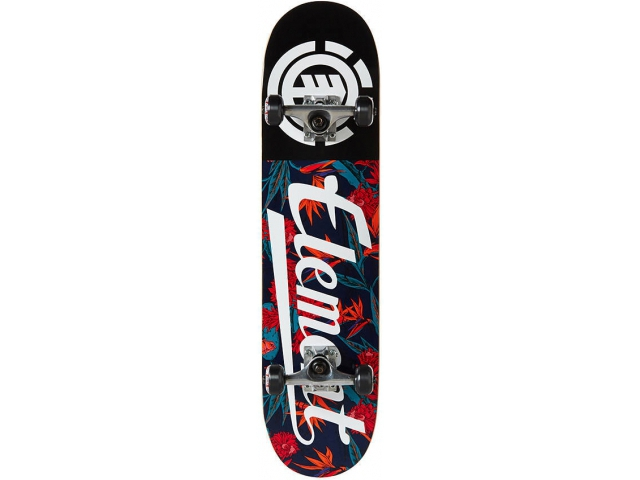 Skate Complet Element Sketch Floral Script 7.75