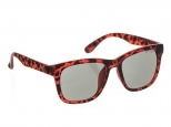 Animal Illuminate Matte Tortoiseshell/Brown
