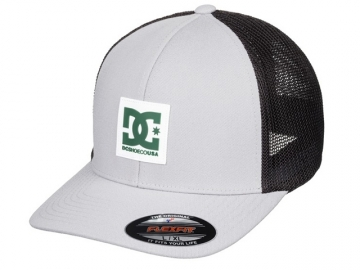 DC Mesher Trucker Glaciar Grey (thumb #0)